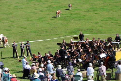 Concert des pâturages - La Grand Borne de l'Auberson (Suisse) - 30 aout 2015